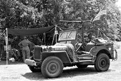 World War II Reenactments.