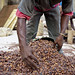 Nestlé's efforts to ensure a sustainable flow of good quality cocoa, and tackle child labour in Côte d'Ivoire - 2012