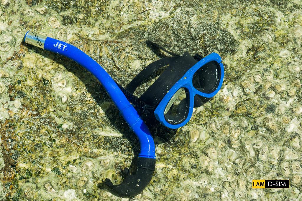 Snorkeling (34)