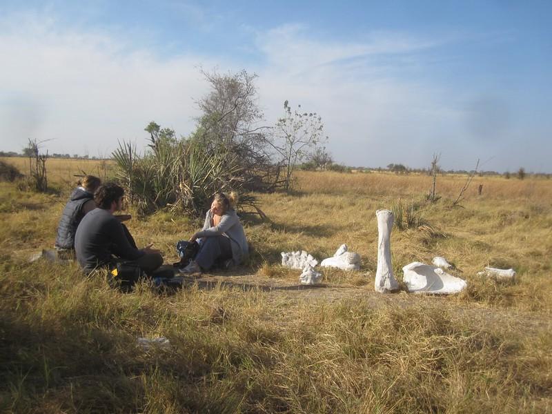 Okavango Delta Botswana Hike II Africa