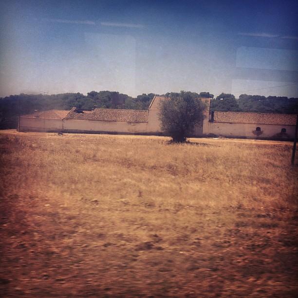 Paisagem alentejana mas quase a chegar ao Algarve