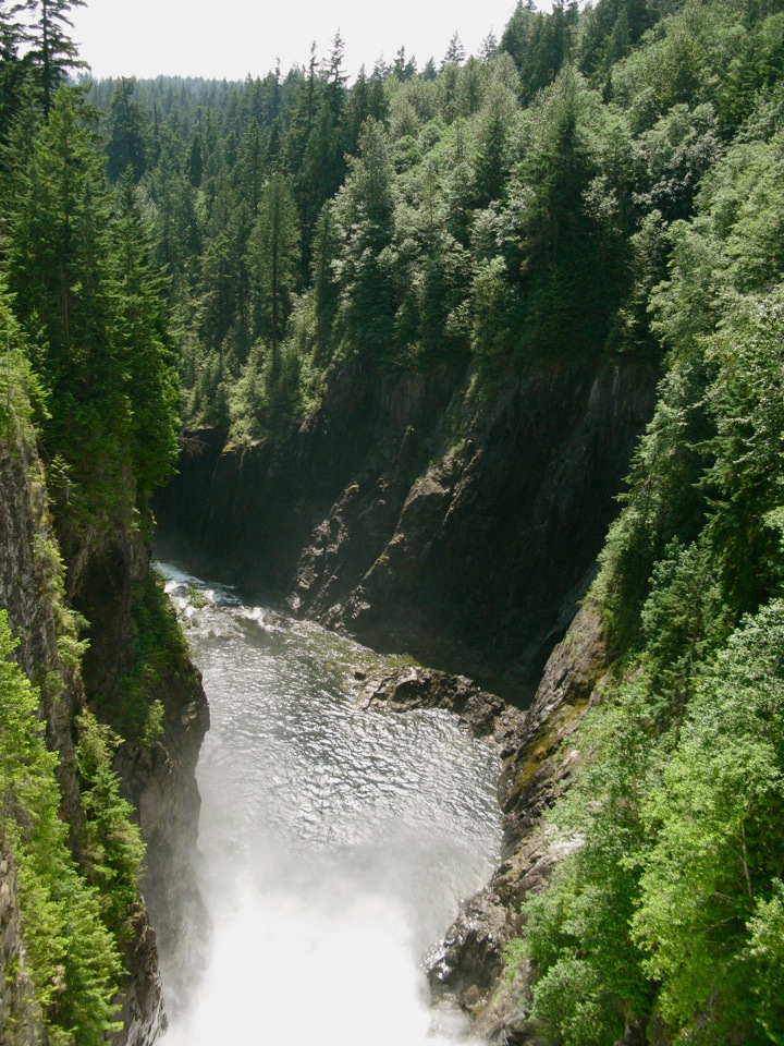 capilano canyon 001