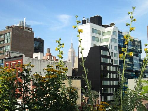 Empire & High Line, NYC. Nueva York