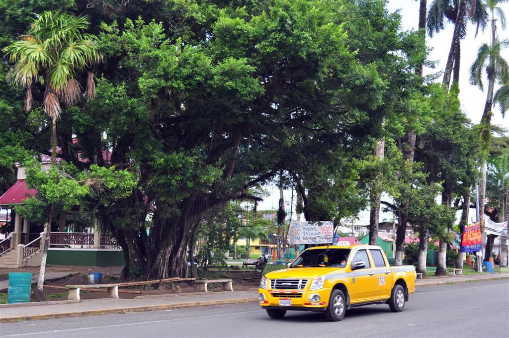 """""""El parque"""", es el epicentro del pueblo de Bocas del Toro, comercios, autobuses y Taxis hace que aquí esté el lugar con más vida de Isla Colón. bocas del toro - 7598189010 04564f2a72 o - Bocas del Toro, escondido destino vírgen en Panamá"""