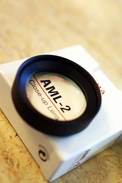 SIGMA-DP2-Merrill-AML-2