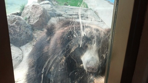 Zoo Boise 8-12-12