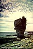 Tobermory - Flowerpot Island by Barbara Hamilton