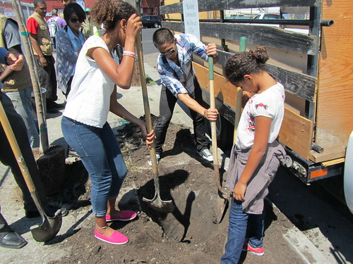 Local young people prepare the ground for tree plantings at the Urban Releaf ceremony in Oakland, Calif., on Aug. 20.