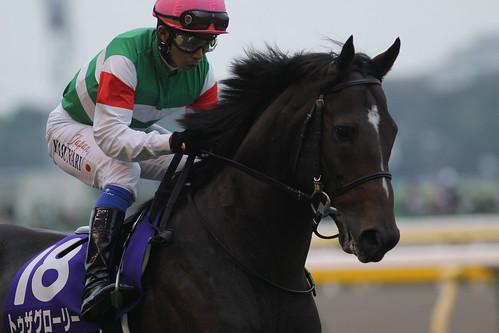 トゥザグローリー 返し馬