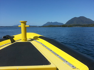 Whale Watching Adventure with Ocean Outfitters, Tofino, British Columbia