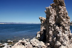 Mono Lake CA (20) Aug 2013_feistyharriet