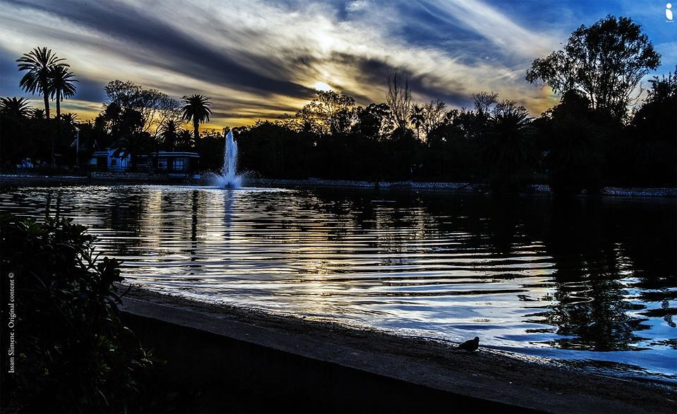 #parc #lac #sunset #nature #tunis #landscape #clouds