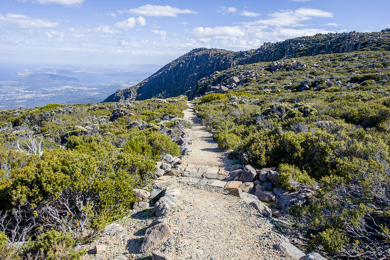 Mount Wellington hiking trail