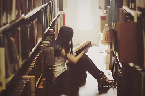 Day 313/365 ~ A House Without Books is Like a Room Without Windows