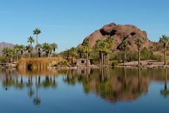 Lake @ Papago Park (4)