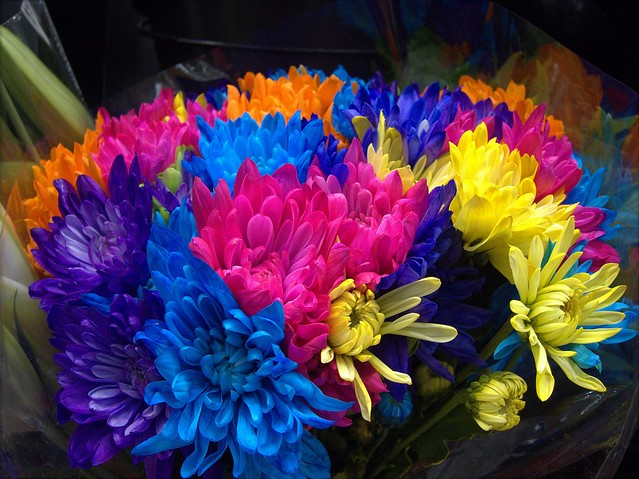 Costco Flowers Flickr Photo Sharing