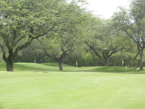 ewa beach Golf Club 113