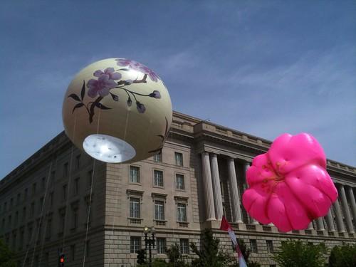 Cherry Blossom Festival Parade Balloons
