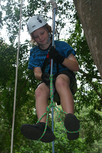 Tree climbers 2