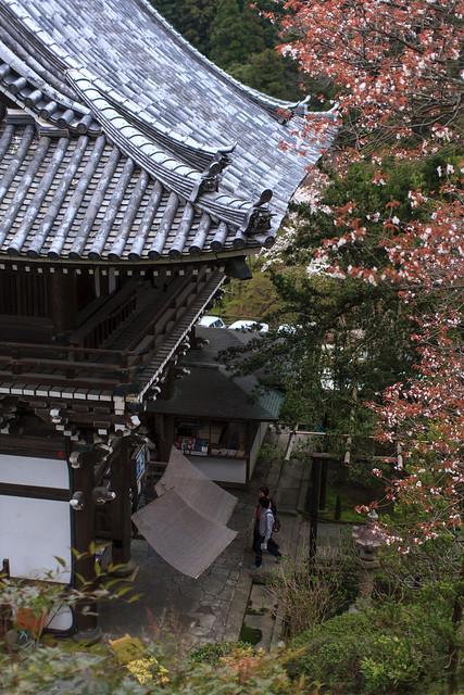 20120416-Yoshimine-dera-2