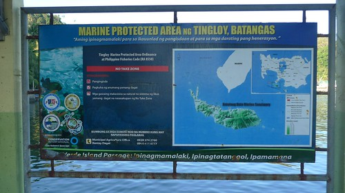 marine protected area of tingloy, batangas