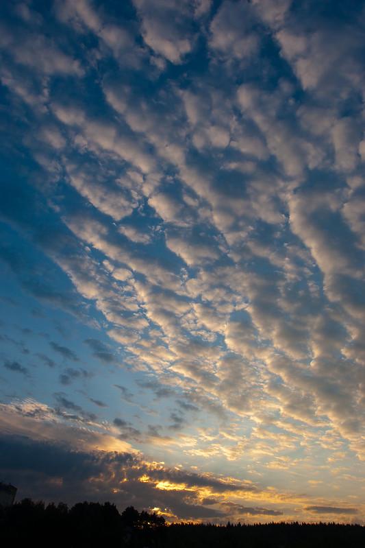 Winged Sky