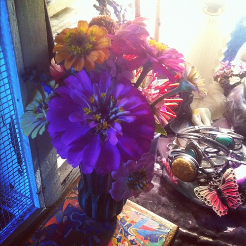 Homegrown zinnia bouquet for bedside cheering morning and night.