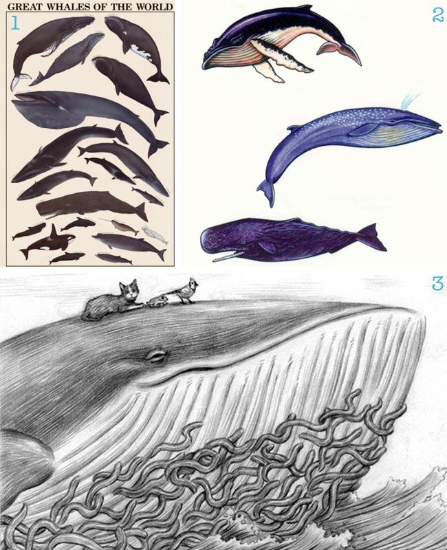 Whale Tattoos2