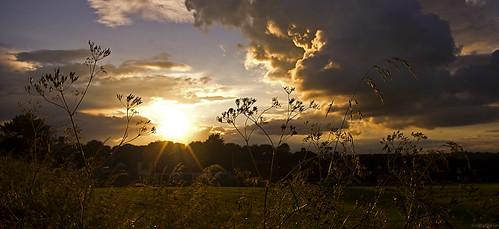 Sunset // 04 07 12