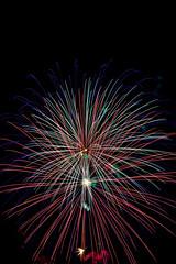 Fireworks Ann Morrison Park 2012 - 18