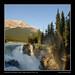Rainbow at Athabasca Falls, Jasper National Park, Alberta by kgogrady