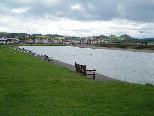 Seagull's Playground - Seemoewenspielplatz by abracacamera