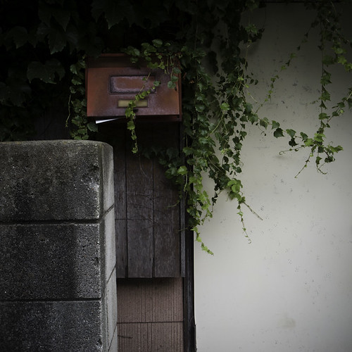 Mailbox and Ivy Tonal Conversation