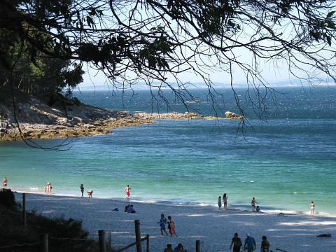 Playa Figueiras islas cies