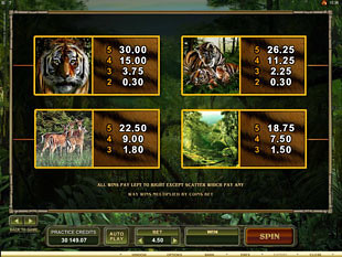 Untamed Bengal Tiger Slots Payout