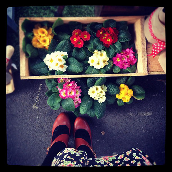 laneway_esme instagram vintage floral shoes