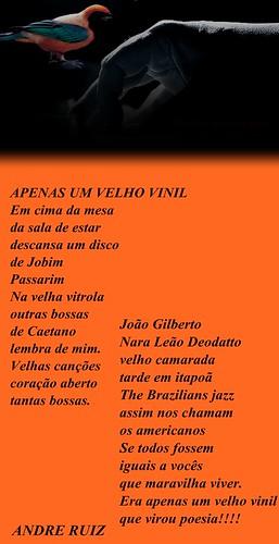 APENAS UM VELHO VINIL by amigos do poeta