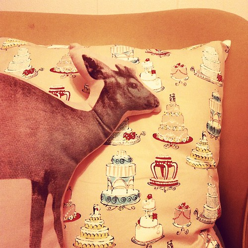 Cake ad deer pillows.