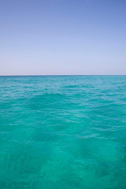 Seagrove Beach Fl News