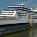 Small photo of P&O Adonia At Liverpool