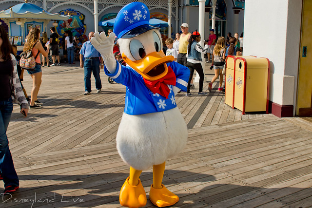 Holiday Donald - 2012