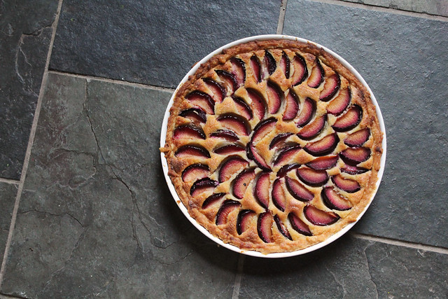 plum frangipan tart