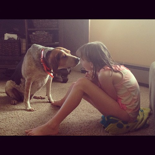 A hound dog and a grasshopper