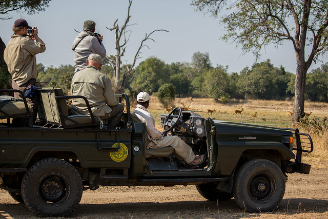Safari Vehicle Shots