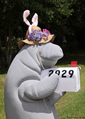 Manatee Easter Bunny