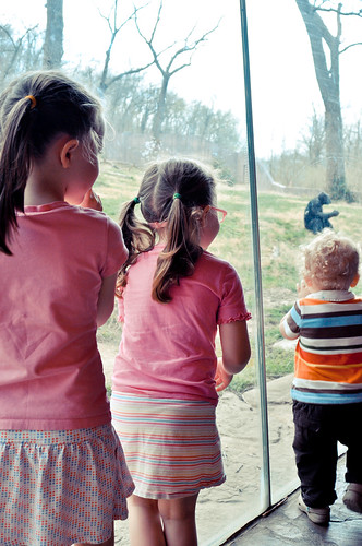 A Littles Visit To The Zoo | 03/16/2012
