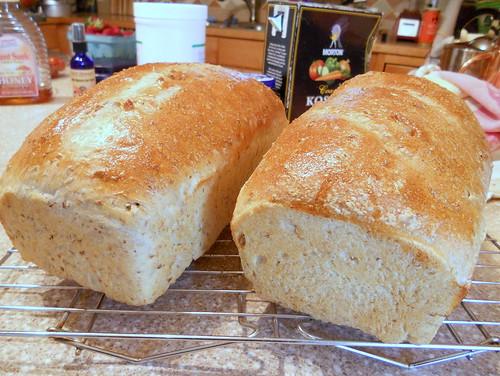 spent grain bread, round 2 014