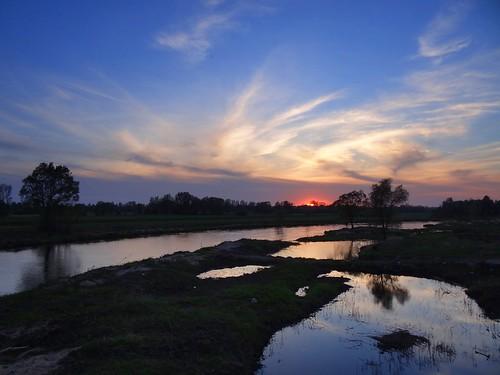 trees sunset sky sun sunlight nature water sunshine clouds river landscape evening spring colours meadow poland polska natura sunlit słońce wiosna przyroda kolory rzeka wieczór chmury niebo zachódsłońca drzewa łąka krajobraz warta sonydschx100v