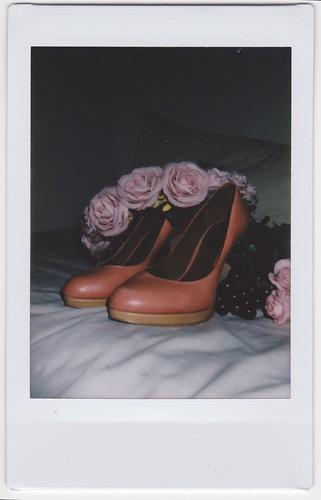 Polaroids 8