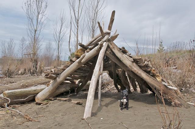 Summer House Swan Island